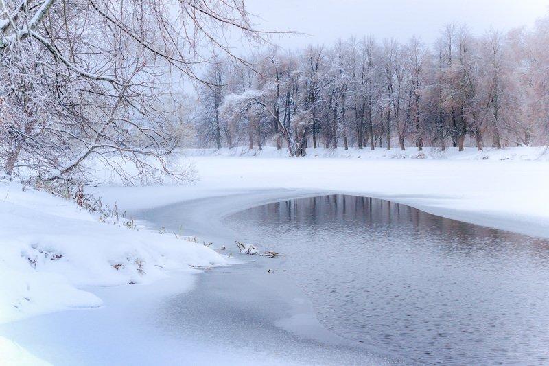 зима, снег, пруд, природа Молодая зимаphoto preview