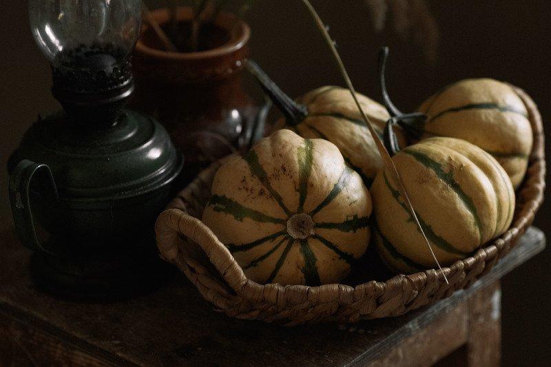 тыквы осень ***photo preview
