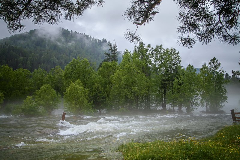 Наводнение. Алтайphoto preview