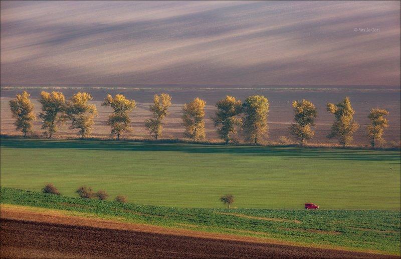 южная моравия,пейзаж,jumpy,линии,south moravian,lines,свет,czech,весна,чехия,landscapes,поле RED JUMPYphoto preview