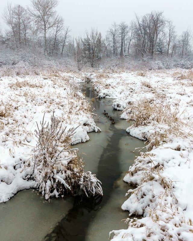 Snowfallphoto preview