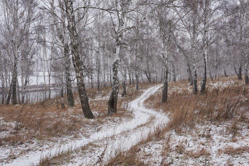 По первому снегуphoto preview