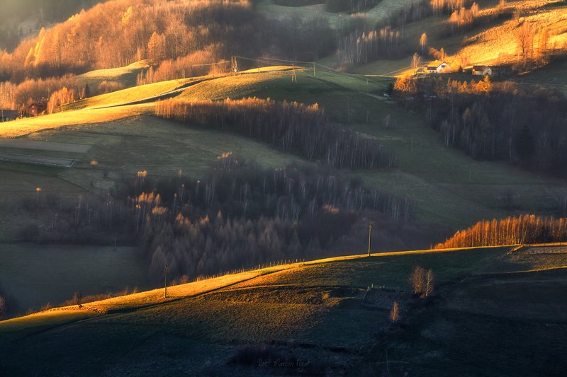 Autumn light.photo preview