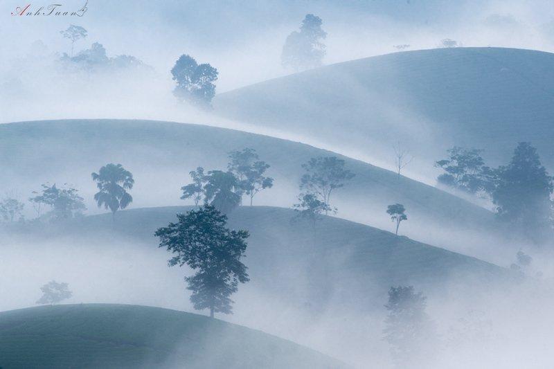 #sellingphoto #landscape Good morningphoto preview