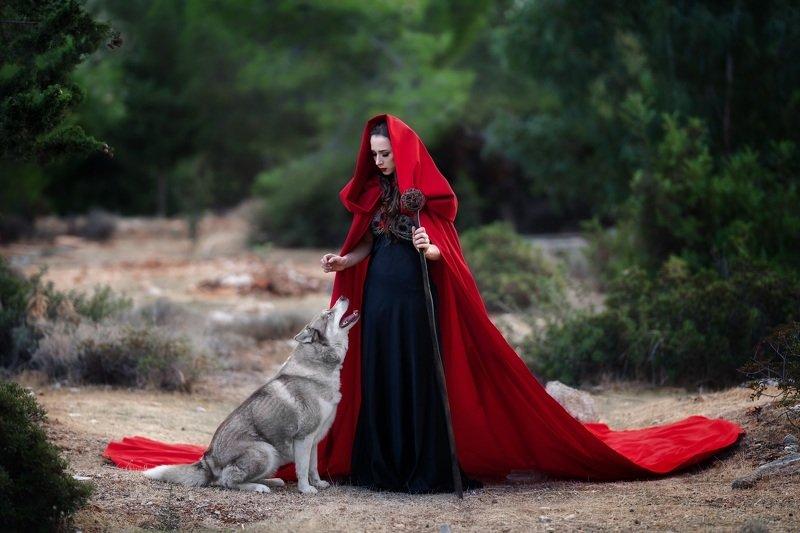 волк лес колдунья Колдуньяphoto preview