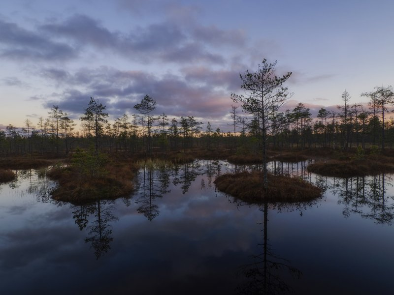 закат на болотеphoto preview