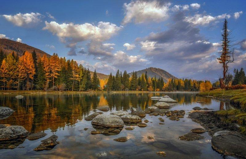 горный алтай,осень,река аргут По камушкам...photo preview