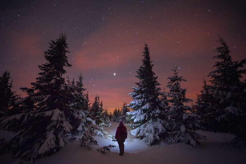Searching for the Northern Star фото превью