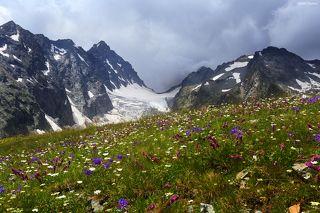 Цветущий Кавказ