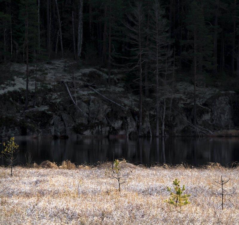 болото, кайф, рассвет ,север ,солнце, свет, закат, облака, отражение, фототур, минимализм, свет, тень, скалы, озеро Морозное утро в Карелииphoto preview