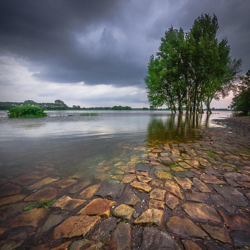 Берег, Герамная, Дерево, Лето, Река, Эльба ersten Sommertag am Elbufer #1photo preview