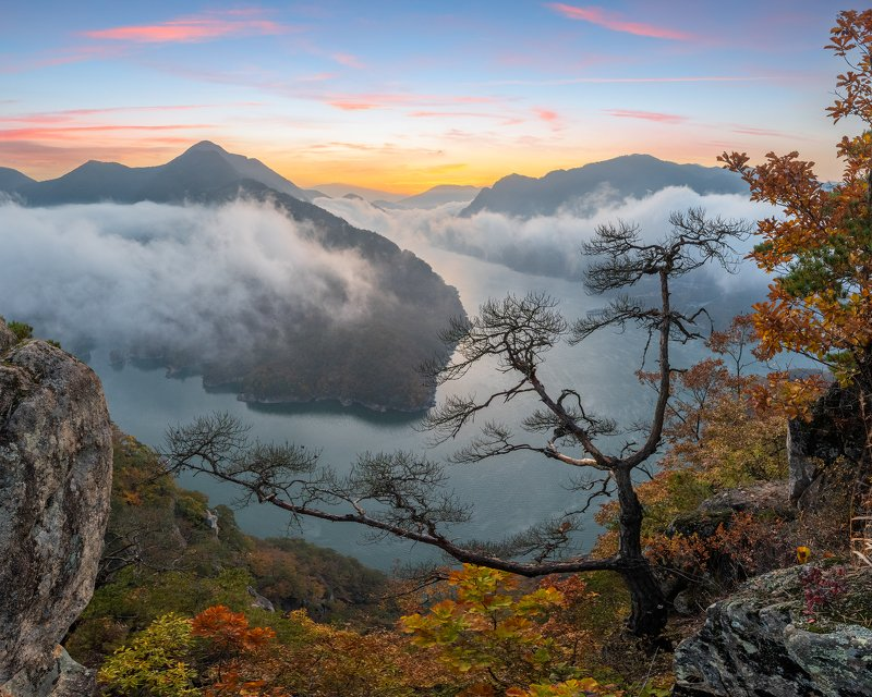 mountains,peak,hiking,fog,clouds,autumn Dead treephoto preview