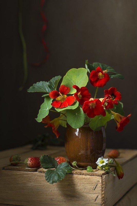 художественное фото,натюоморт с цветами,настурция,клубника. Настурции с клубникой.photo preview