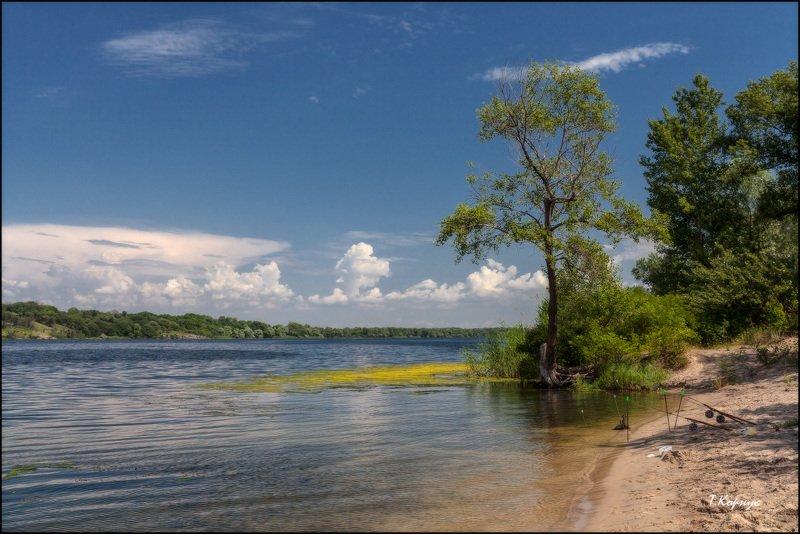 река,лето Родные просторыphoto preview
