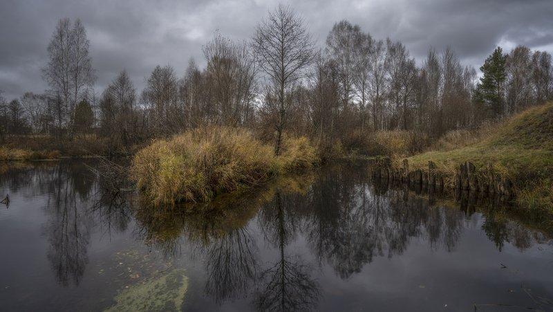 осень река остров Островок.photo preview