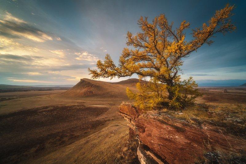 россия, хакасия, сундуки, степь, горы, лесостепь, рассвет, природа, пейзаж, восход солнца, осень, лиственница Сундукиphoto preview