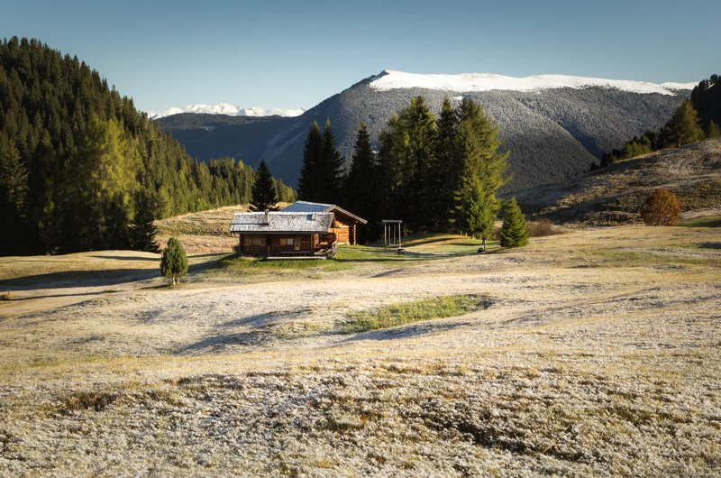 снег; горы; лес; альпы; италия Первый снегphoto preview