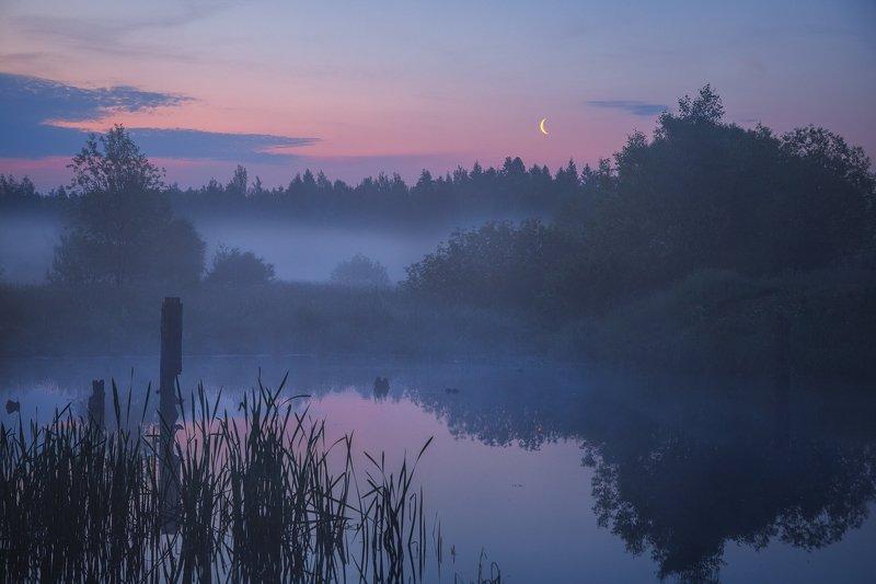 туман, озеро,  Предрассветное. Синее. Раннее.photo preview