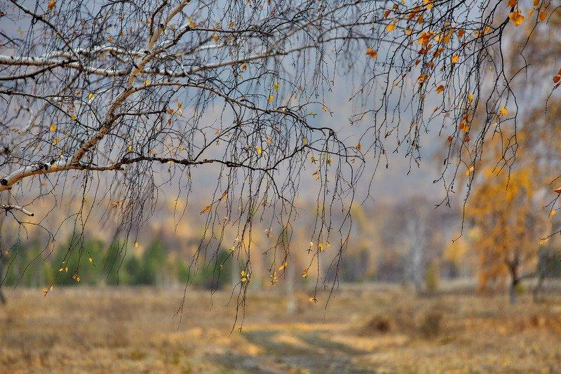 башкирия, южный урал орск новотроицк Октябрь...photo preview
