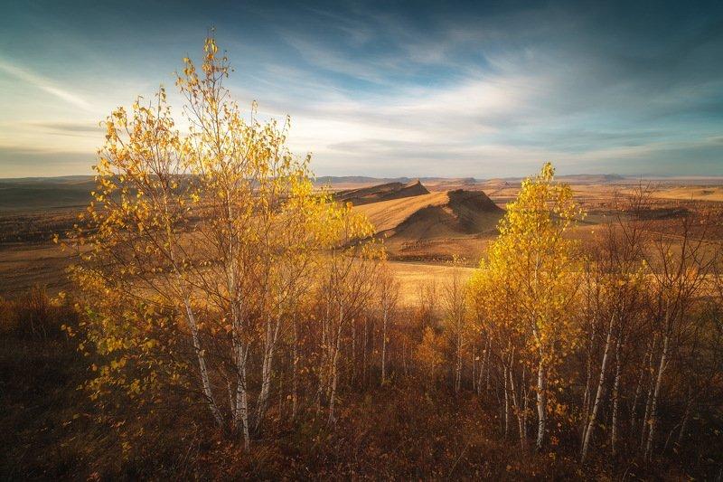 россия, хакасия, сундуки, степь, горы, лесостепь, закат, природа, пейзаж, заход солнца, осень, лиственница, осина Золотая осень в Хакасииphoto preview