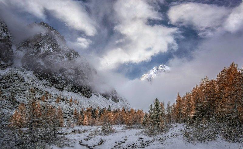 горный алтай,осень,утро,долина актру Утро  первого  снега..photo preview