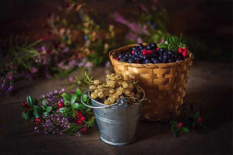 ягоды, сморода, черника, корзина, натюрморт про лето и ягодкиphoto preview