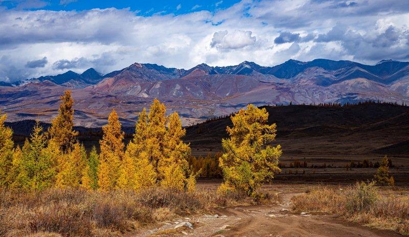 алтай. осень. горы. Курайская степь.photo preview