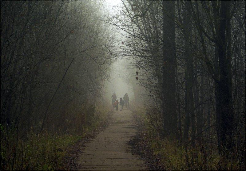 осень, туман Сумрачные дни ноябряphoto preview