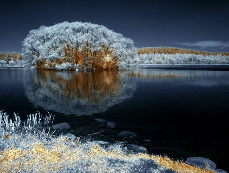 infrared,ик-фото,инфракрасное фото, инфракрасная фотография, пейзаж, весна Созерцание весенних отражений.photo preview