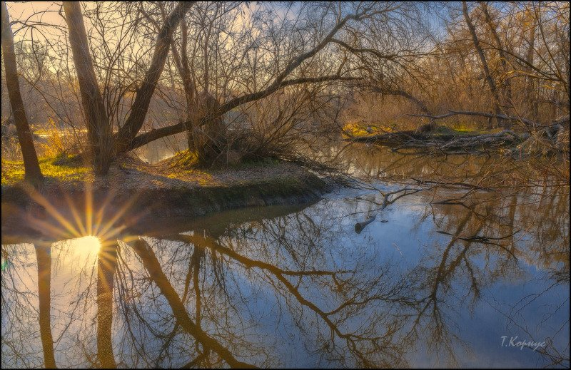 весна,затока,отражение,контражур Перевертышphoto preview