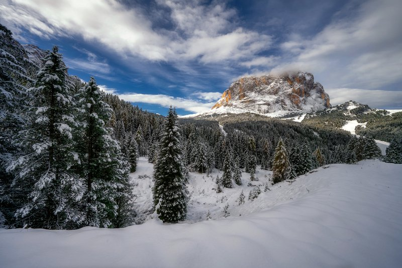 landscape Winter photo preview