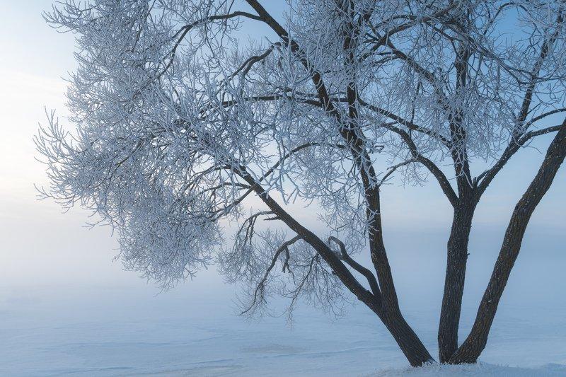 #зима #winter Февраль 2019photo preview