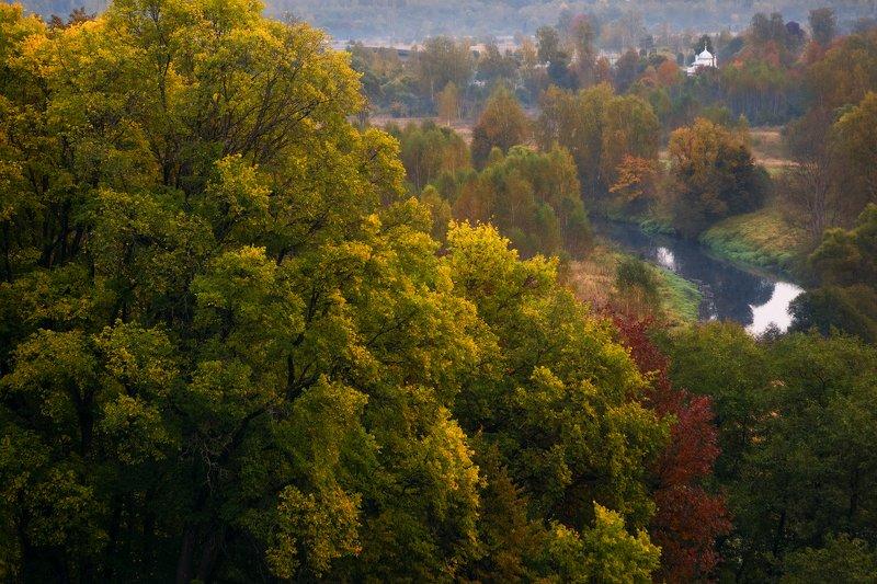 осень, подмосковье, истра Осенний этюдphoto preview