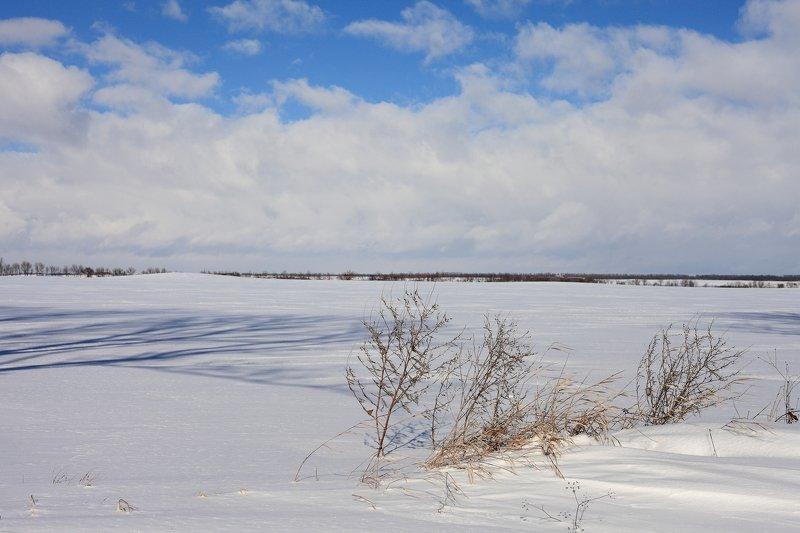 хутор, соколихин, photo preview