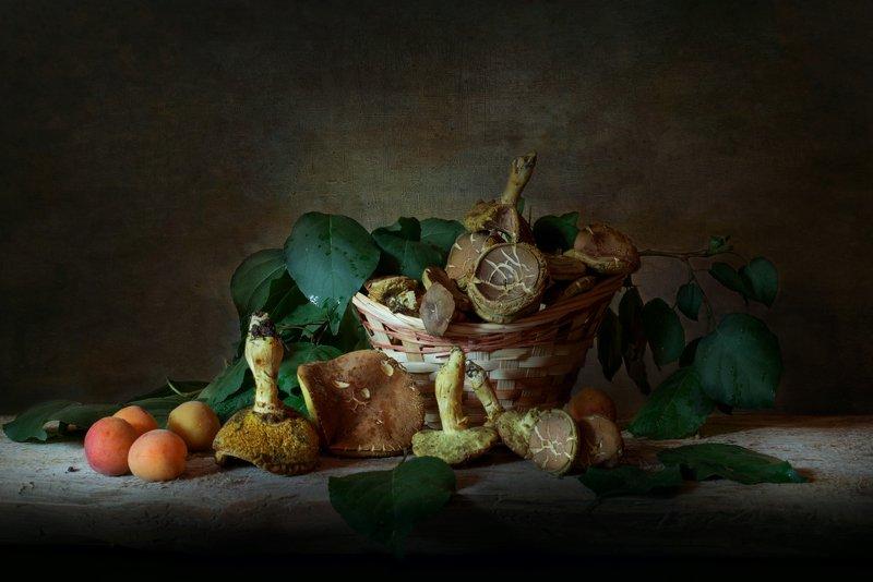грибы,абрикосы,лето,натюрморт Из летнего лесаphoto preview