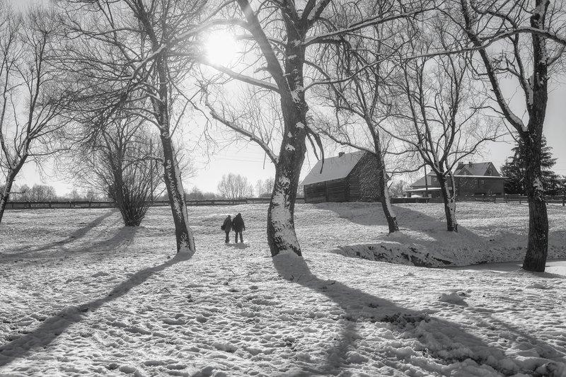 зима,декабрь,черно-белое \