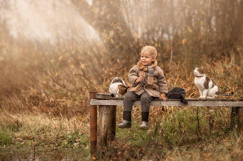 дети, деревенские дети, деревня, мальчики, мальчишки, дети и животные, кошка, кот, осень Друзьяphoto preview