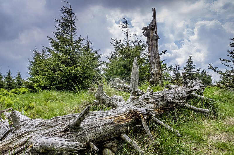 Upper Lusatia, right at the top.photo preview