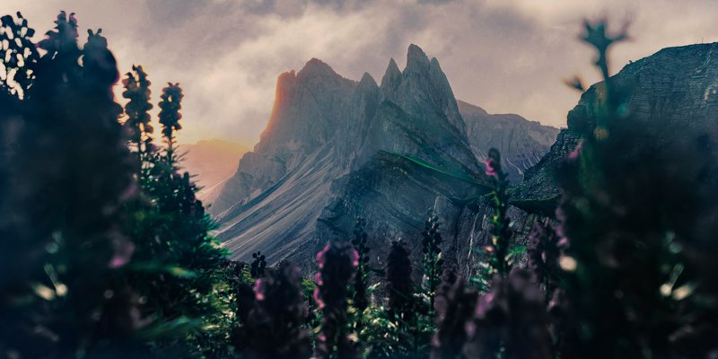 dolomiti, beauty, mountain, art, sunset, flora, flowers Dream of Secedaphoto preview