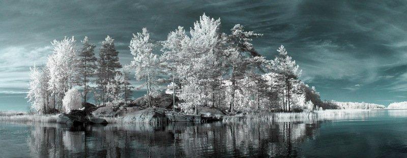 инфракрасная фотография, ir, ладога, деревья, небо, природа,  красиво, вода, отражение, остров, карелия Карелия. Это летоphoto preview
