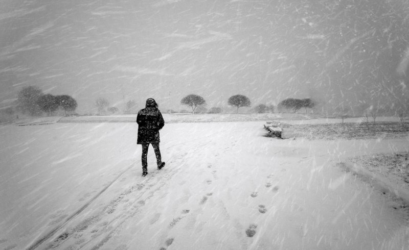 город,зима,метель,человек,снегопад,парк Метель.photo preview
