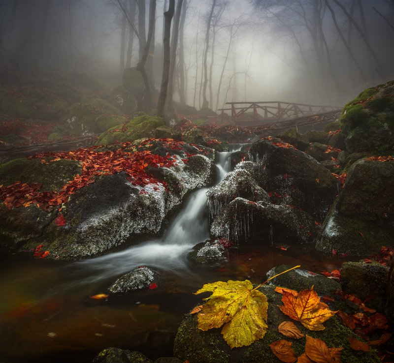 landscape nature scenery forest wood autumn mist misty fog foggy river waterfall colors mountain vitosha bulgaria туман лес Like a memoryphoto preview