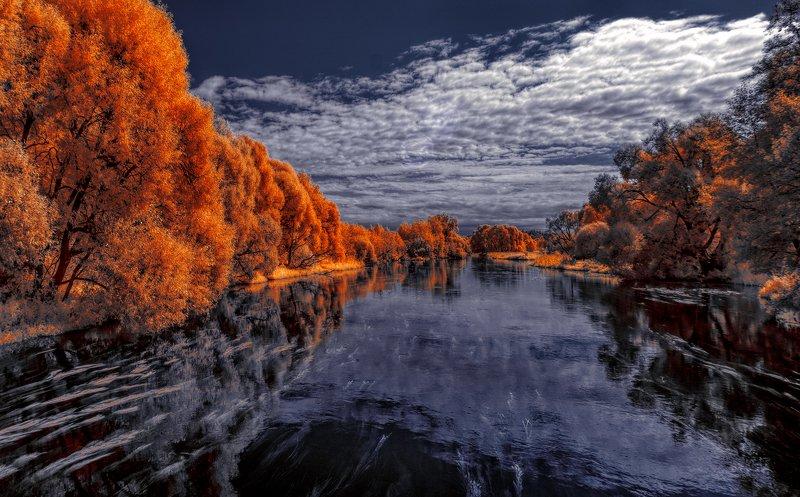 infrared,ик-фото,инфракрасное фото, инфракрасная фотография, пейзаж, лето У неба есть небо.photo preview