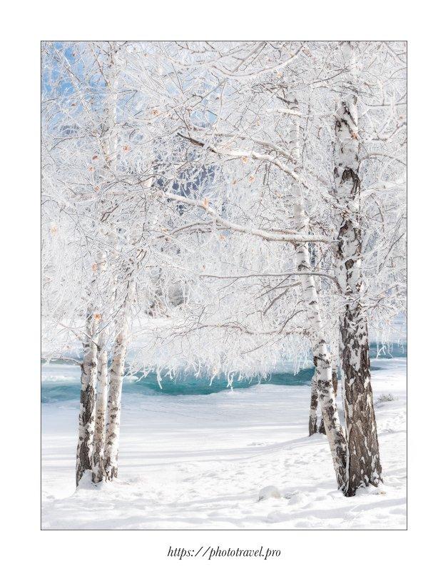 алтай, горный алтай, зима, осень, усть-кан, катунь, северо-чуйский хребет, курайская степь, лебединое озеро, леюеди, Алтайские сюжетыphoto preview