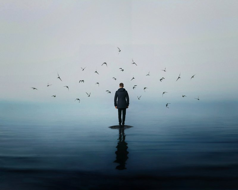 conceptual photography, conceptual, conceptualism finderphoto preview