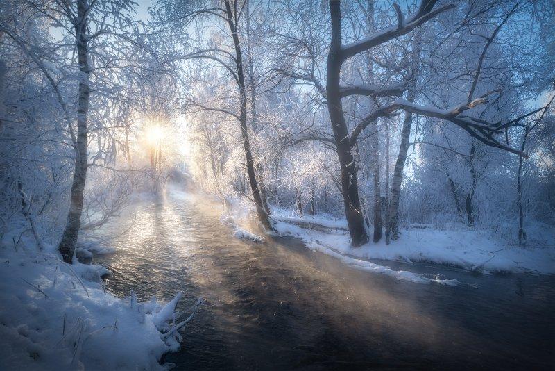 алтай, алтайский край, лебединый заказник, семилетка, река кокша, деревья в инее, лес, березы, иней, зима, зимний пейзаж, декабрь, зимний туман, река Утро на реке Первая Кокшаphoto preview