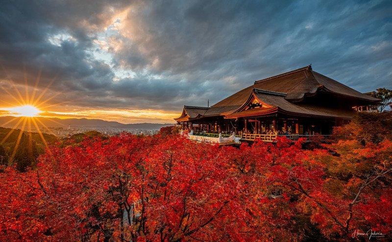 sunset autumn temple japan  [ Sunset at Kiyomizu-dera ]photo preview