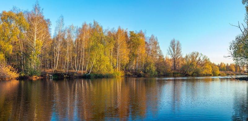 золотая осень, октябрь, река, усмань, вечер, природа photo preview