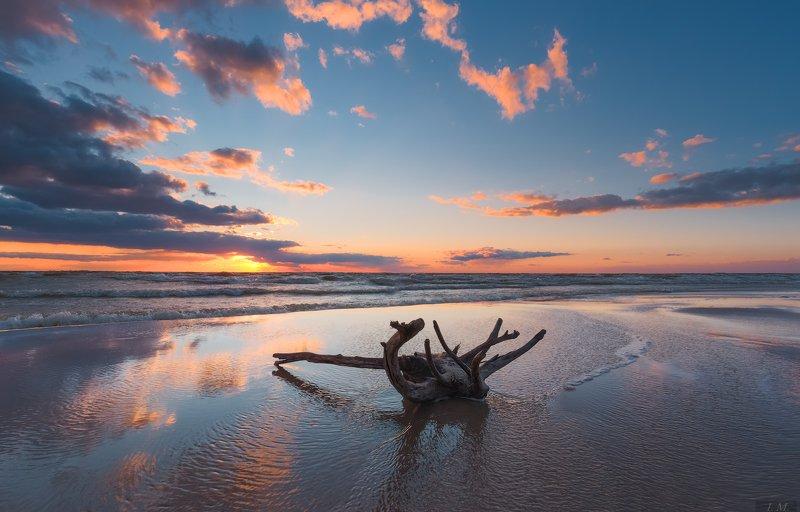 windy, evening, sea, sunset, reflection, water, seascape, blue, sky, clouds, light, panorama, landscape, wind, вечер, море, пейзаж, свет, облака, отражение, коряга, панорама, закат, ветер ветреный вечер ..photo preview