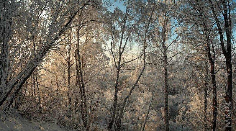 пейзаж  утро зима иней декабрь Декабрьphoto preview